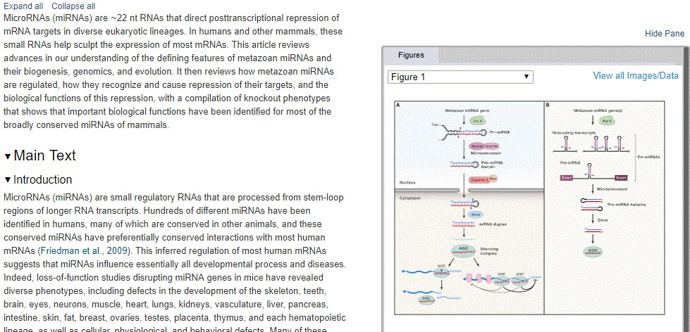 Post Transcriptional Regulation by STAR Proteins: Control of RNA Metabolism