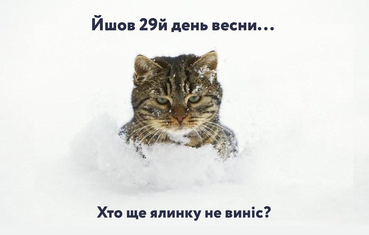 """""""Даже если снег пролежит до июня"""": """"Нафтогаз"""" сообщил о запасах газа в хранилищах - Цензор.НЕТ 538"""