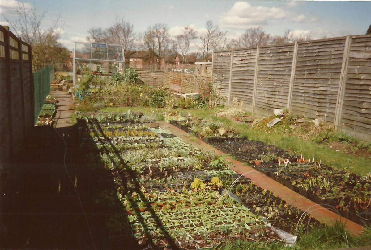 #tbt From @Rosyhardy62 @RobHardyPlants back garden to celebrating #30yrs in love and in business 1988-2018 :) pic.twitter.com/ft5qbhp4xL