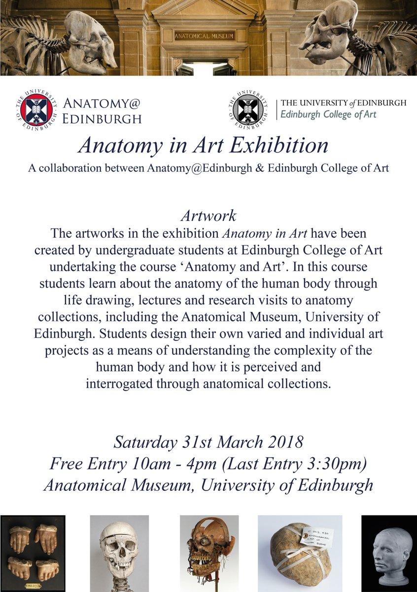 Großzügig Edinburgh Anatomie Museum Galerie - Anatomie Ideen ...