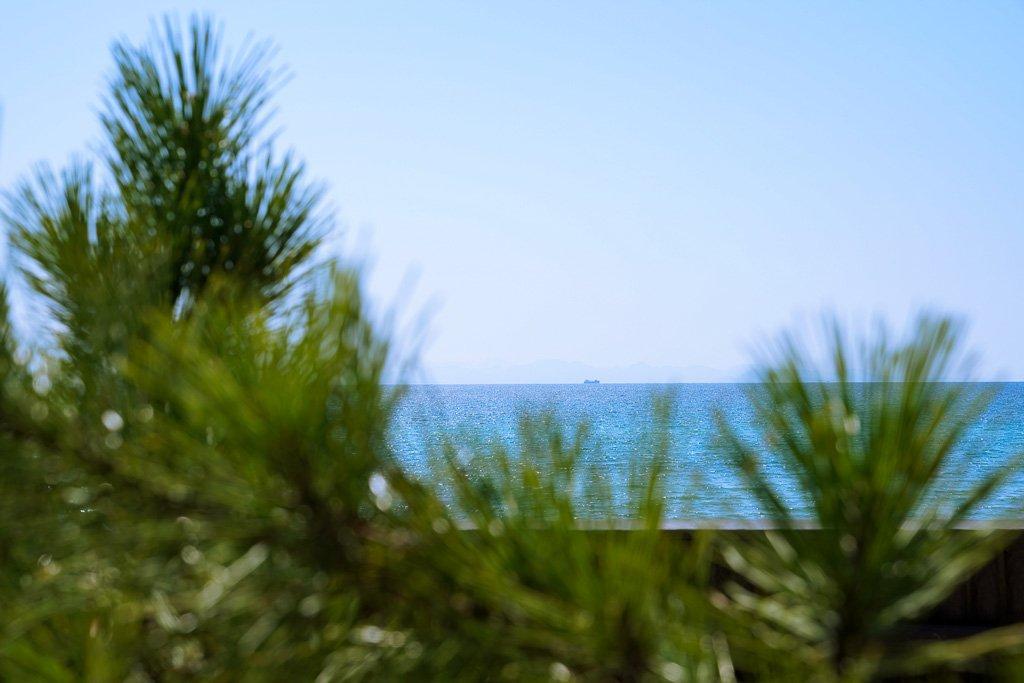 今日の海は青かった(*'▽')/  虹ケ浜海水浴場(山口県光市)  #ファインダー越しの私の世界  #写真好きな人と繋がりたい #写真で伝えたい私の世界 #キリトリセカイ  #photography #coregraphy https://t.co/pNFHyWoNne