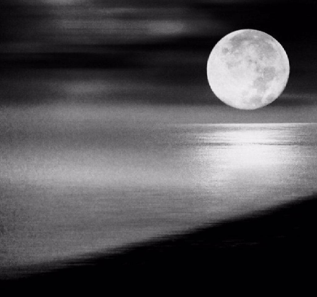 طلال بن خالد على تويتر مثل القمر كنك قمر في حلاياك سبحان من صورك وأبدع جمالك سبحان من نور جبينك وخلاك بين البشر تمشي تباهى بدلالك