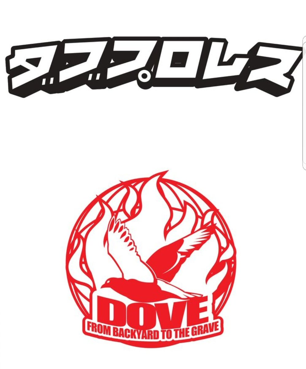 Image result for dove pro wrestling