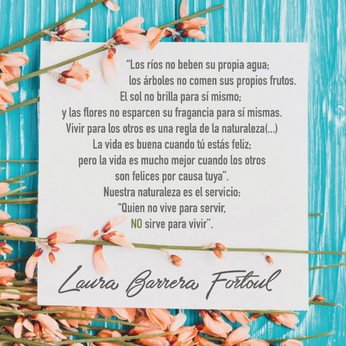 Laura Barrera Fortoul Op Twitter Les Deseo Un Muy Bonito