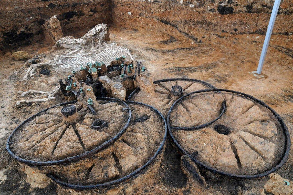 площади меньше самые необычные археологические находки фото труд оплачен будет