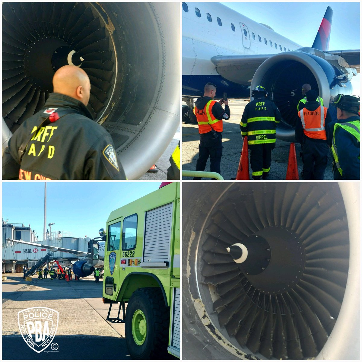 An Airbus 319 Suffered A Bird Strike On Takeoff Aircraft Returned To Jfk Met Inspected By The Papd Rescue Fire Fighter Arff Unit