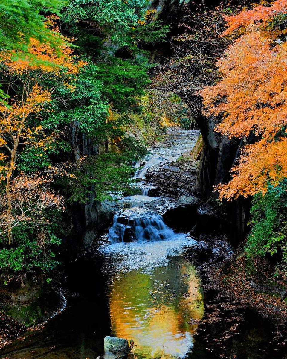 千葉の『亀岩の洞窟・濃溝の滝』