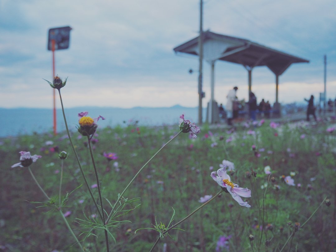 愛媛の『下灘駅』