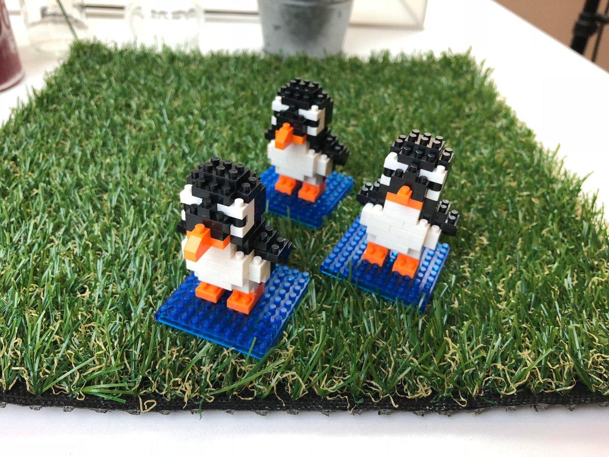 test ツイッターメディア - 【ぺもの紹介】以前紹介したセリアの「ペンギンナノブロック」ですが、実はその後もコツコツ作り続けていま3匹になりました...いつかストームトゥルーパーみたいに並べられたら良いな! #ペンギン #ナノブロック #セリア #100円均一 #SW #スターウォーズ #DIY #seria #百均 https://t.co/uWcEanTjhX