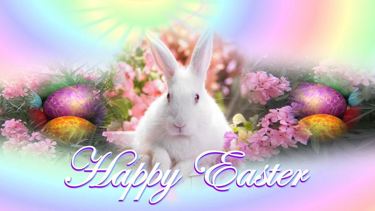 Shlorox On Twitter Guten Morgen Frohe Ostern Ihr