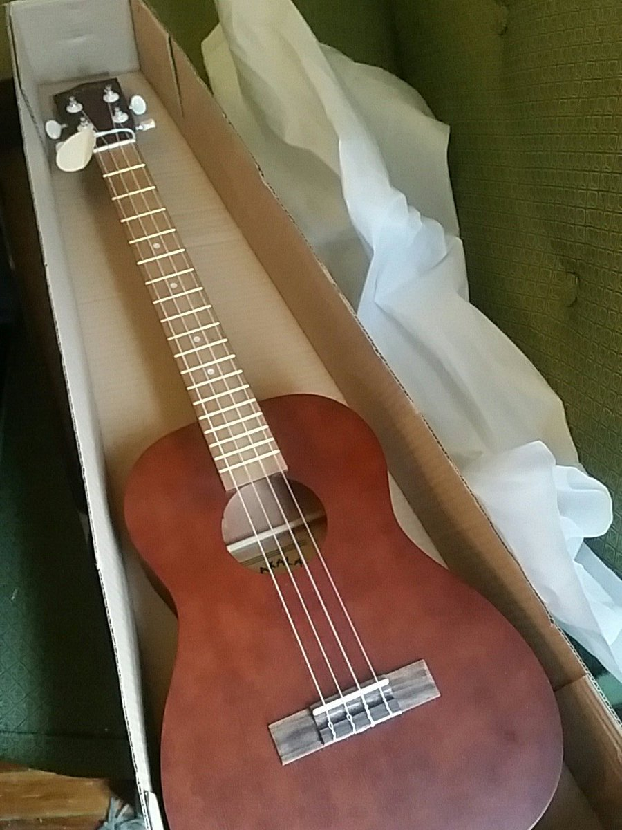 Can I just say I've had my <$70 Kala #baritoneukulele for just 10 minutes and I love it. Imagine an easy to play lightwight top 4 string guitar that you could strum lazily in a hammock all summer <br>http://pic.twitter.com/CJN9KLa2Az