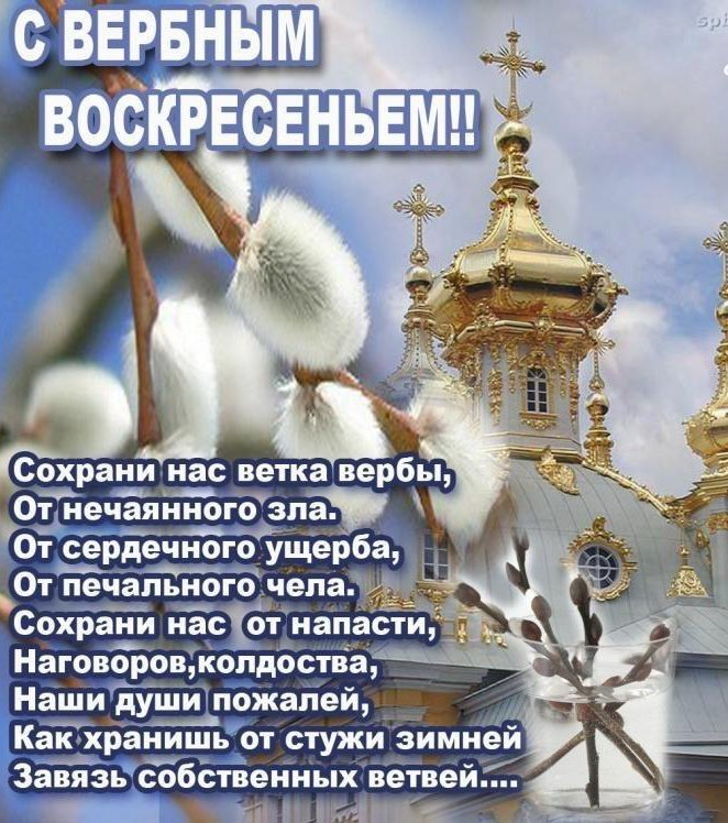 Прикольная, праздник вербное воскресенье картинки поздравления