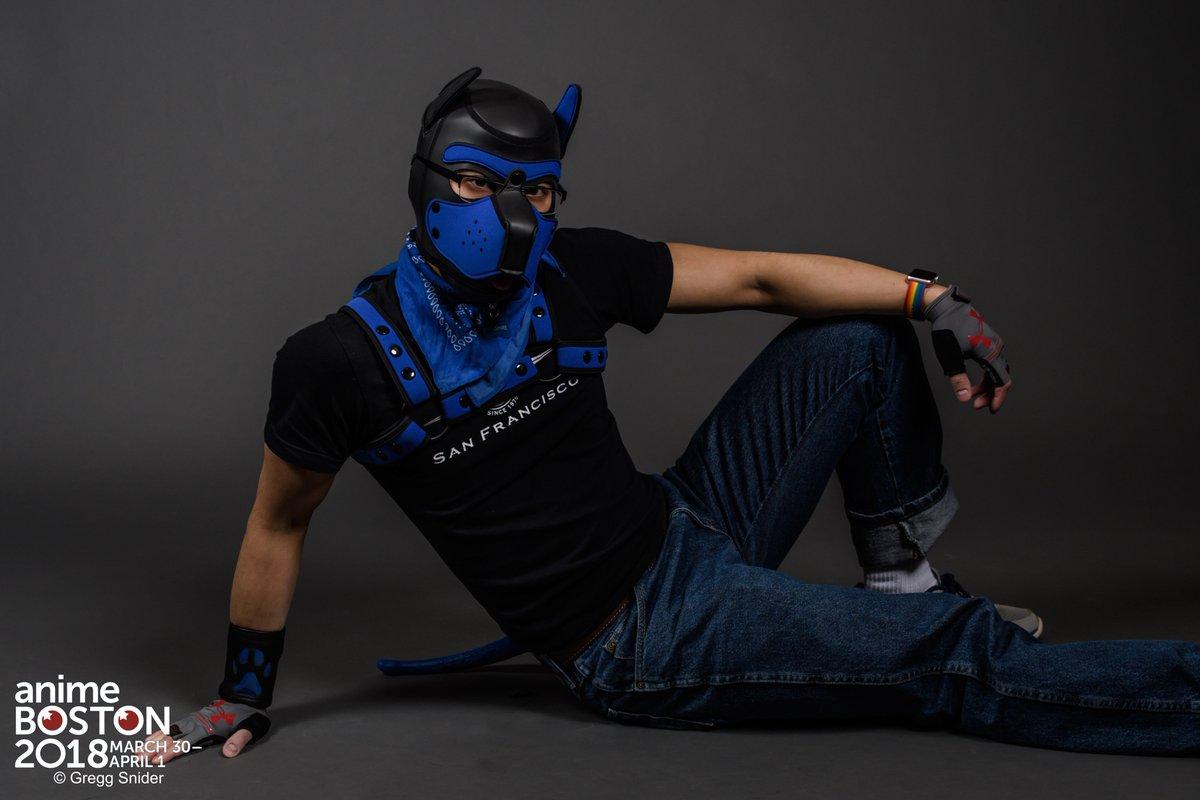 bdsm puppy gear