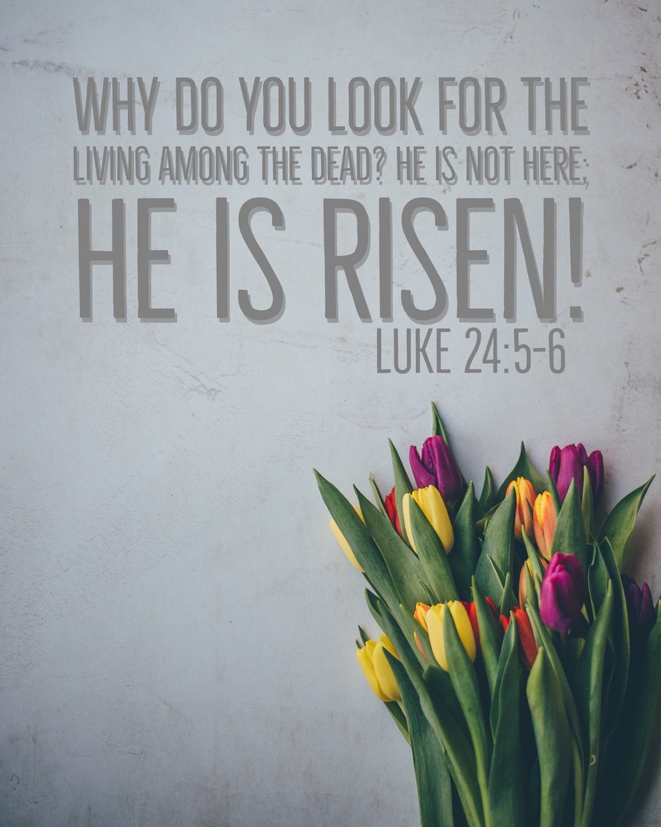 test Twitter Media - Happy Easter from FUGE!! https://t.co/988Y8sbDJX