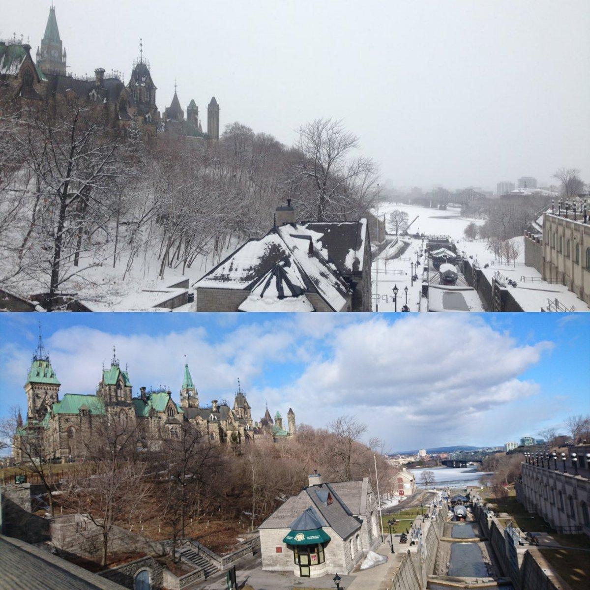 2週間でこれくらい近づきました  #春 #Ottawa #オタワ