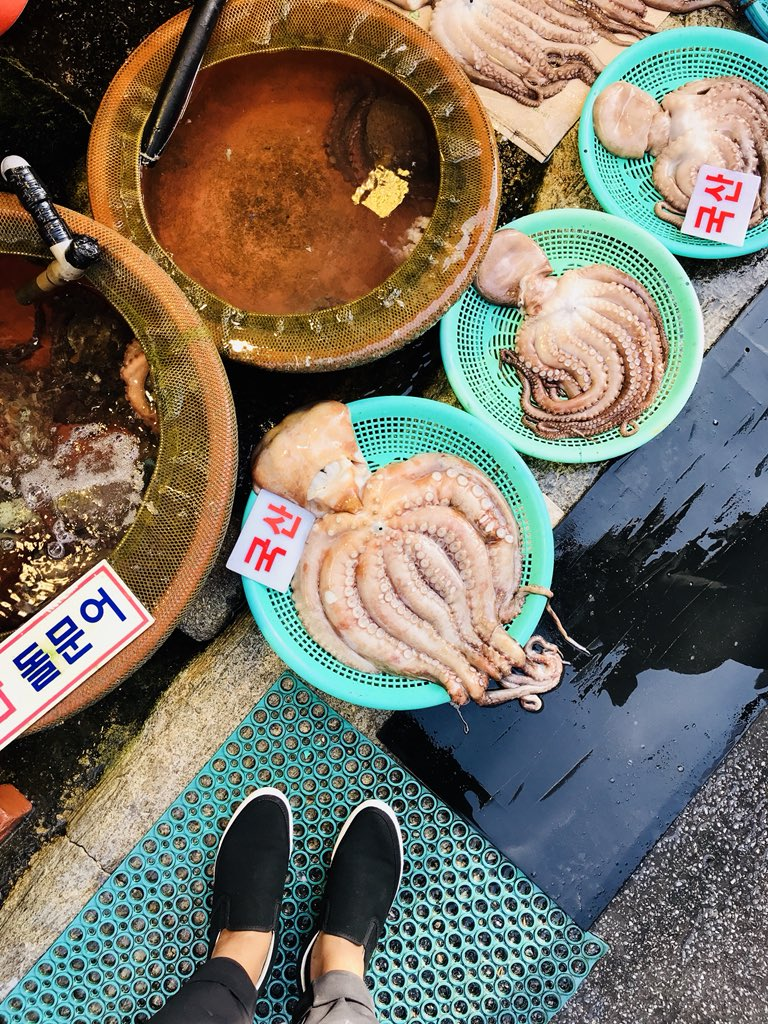 Can't get enough of the bold sights and seafood delights at #Busan's world  famous Jagalchi Market – it's the largest seafood market in all of #Korea!