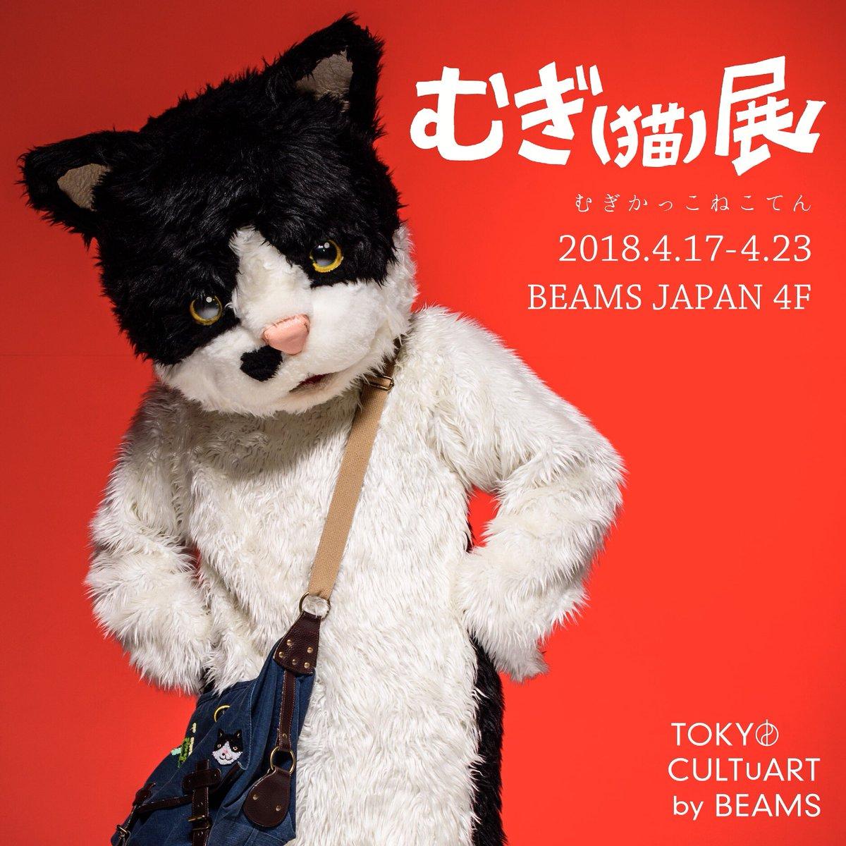 「麦猫」の画像検索結果