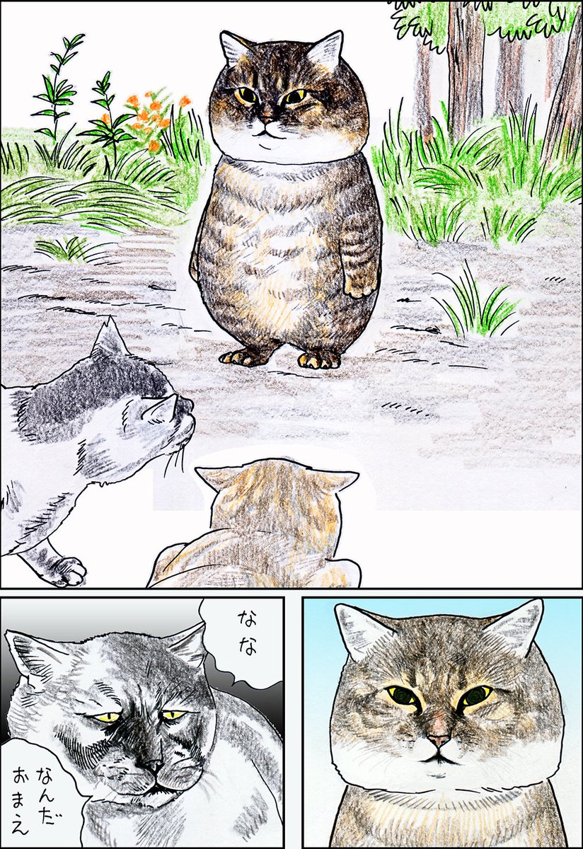 興味があるのはそっちw猫の「つーさん」がとんでもない貫禄でナンパ猫を撃退する話w