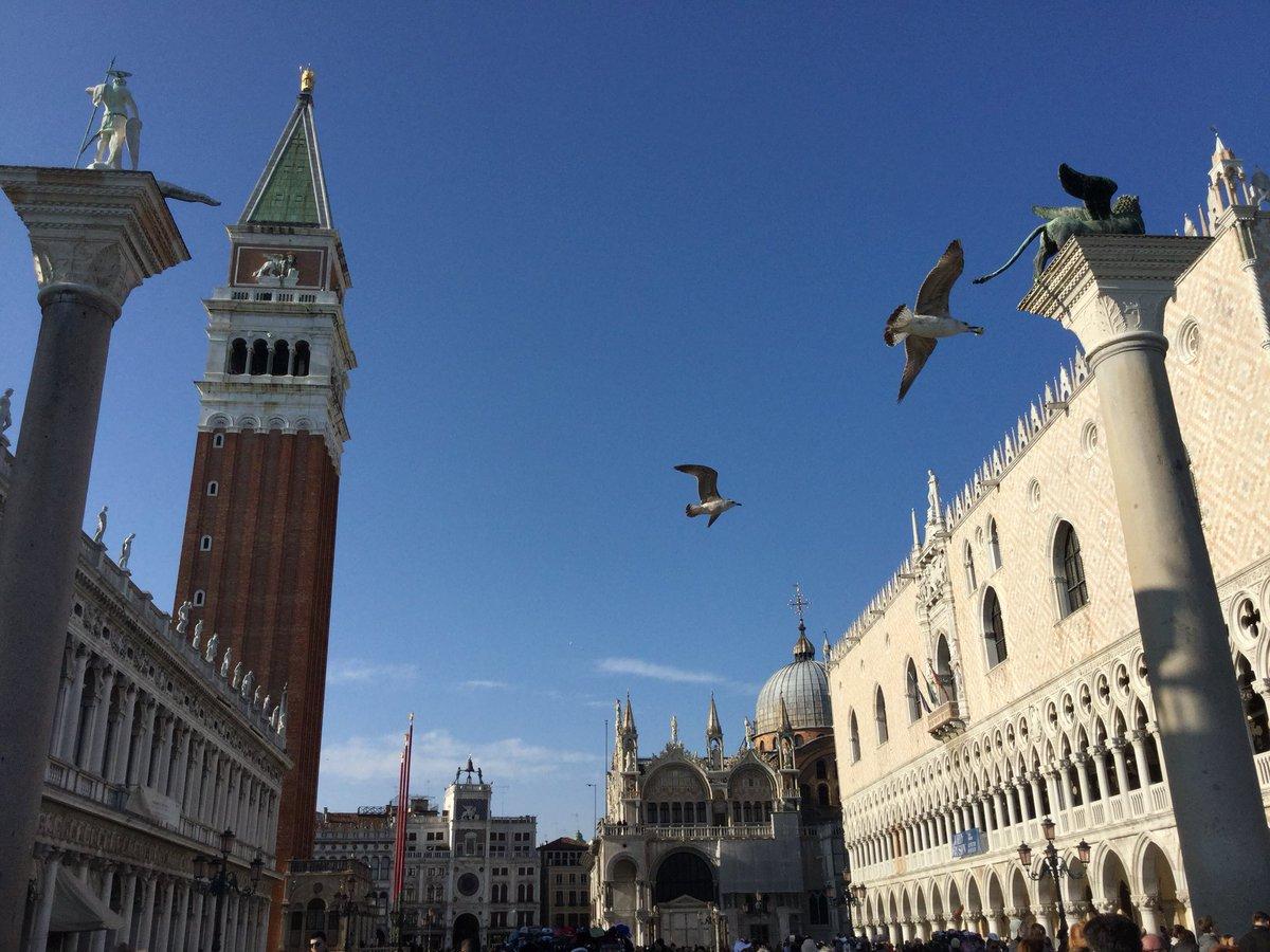 Venice via @Mustapha1508 #travel #Venice #Italy #beautyfromitaly https://t.co/qagwi22nvm