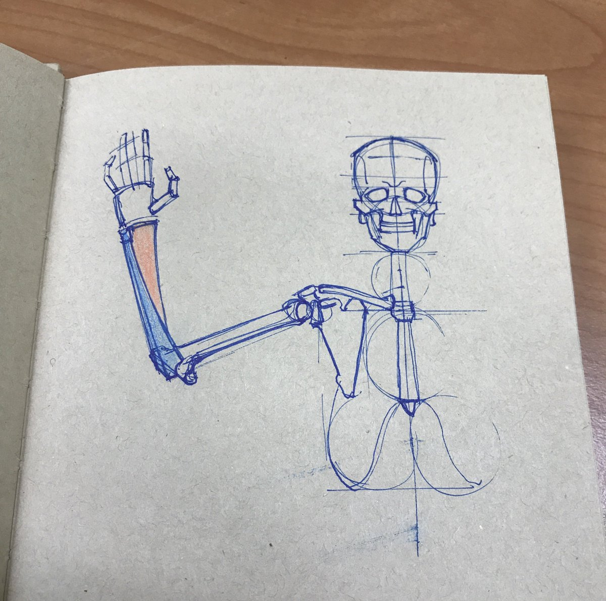 Anatomy Drawing For Artists Pencil4anatomy Twitter