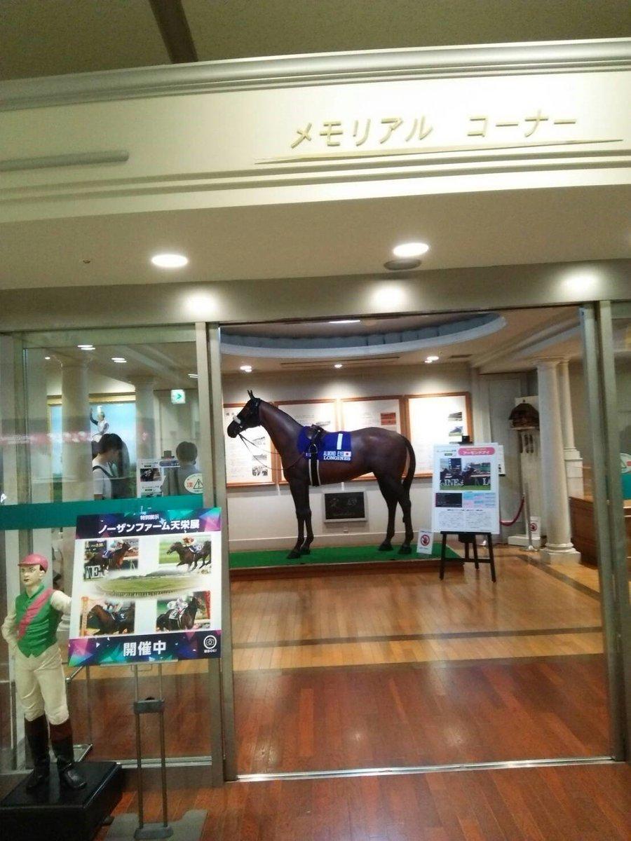 【堀江ゆかりの競馬場レポ①💕】 スタンド1階のメモリアルコーナーでは 今ノーザンファーム天栄展が開催。 アーモンドアイの等身大馬像や レースで使用した蹄鉄や勝負服が展示されています!
