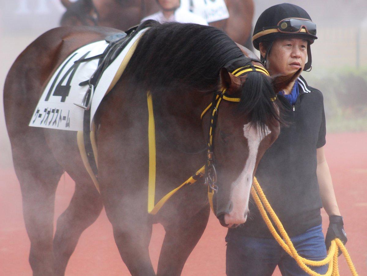 中京5R メイクデビュー中京  ケープオブストーム × 浜中俊  (2019/7/21) #キャロ写