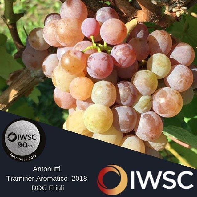 #awardtime #iwsc #traminer #antonuttivini #wineawards #silver #90pointwines #aromaticgrapes #gewurstraminer #vintage2018 #aroundtheworld #friuliveneziagiulia https://ift.tt/2JFTkp1