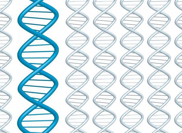 Study sheds light on the darker parts of our genetic heritage: https://bit.ly/2xTw0x5 @NatureComms #DNA