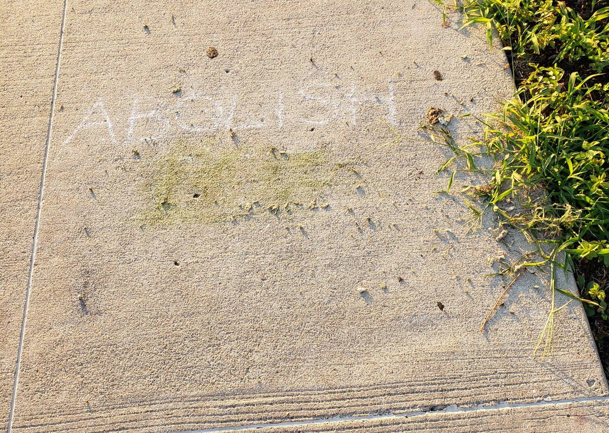 Imagine being so mad at a message on a sidewalk that you tear out weeds to erase it.