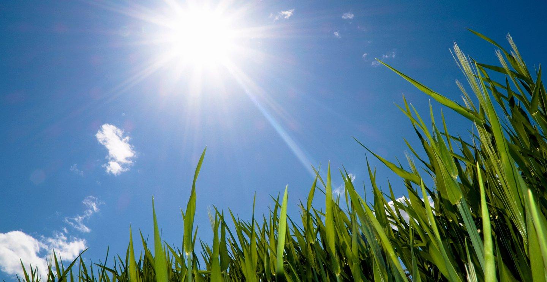 Картинки солнечной погоды летом, новогоднюю тематику своими