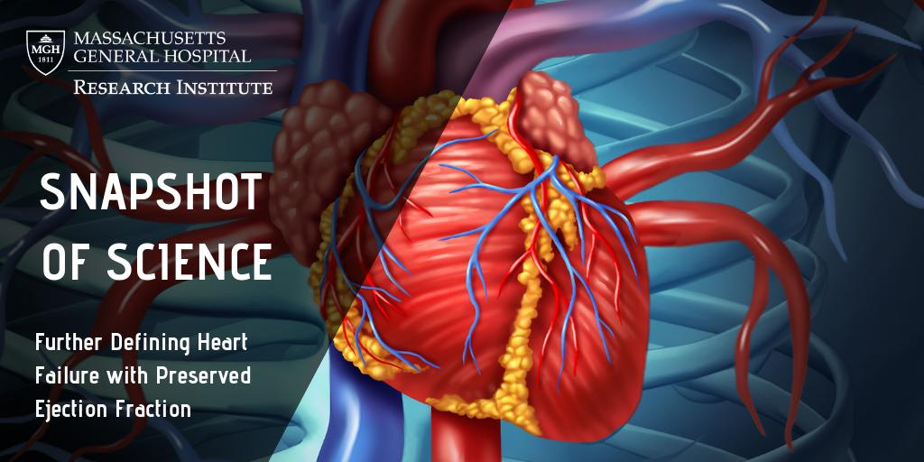 Mass General Heart (@MGHHeartHealth) | Twitter