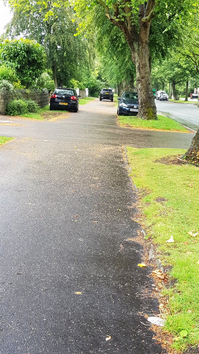 Whirlowdale Rd again. No parking restrictions on the road, plenty of parking space on the road, plenty of off road parking. Causing damage to verges which are public property. Why? <br>http://pic.twitter.com/IXmDfMZHUT