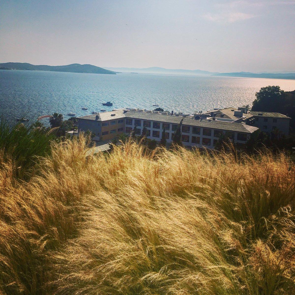 Nisbeths resblogg: Lyxa till det med en #poolvilla i #Halkidiki https://nisbethsresblogg.blogspot.com/2019/07/lyxa-till-det-med-en-poolvilla-i.html?spref=tw…