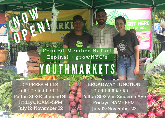 TODAY! Come check out the @GrowNYC Youthmarkets in my district, one in Cypress Hills run by @CHLDC + a NEW one I fully sponsored @ Broadway Junction. @NYCyouthmarkets provide local fresh produce to our district, so swing by EVERY FRIDAY to pick up some healthy groceries!