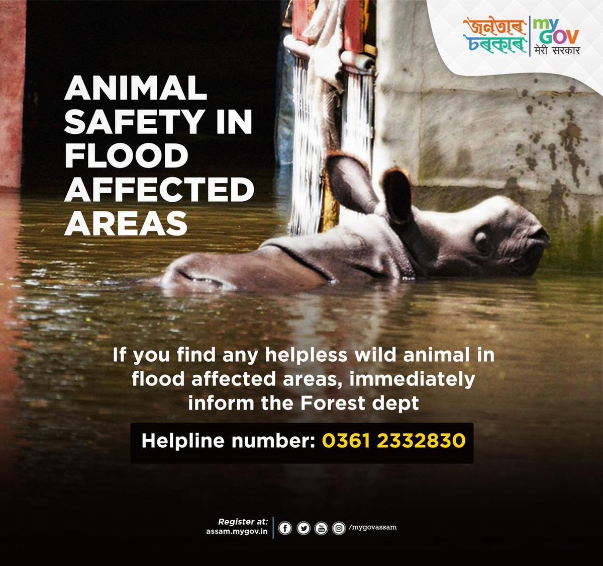 Heartbroken after seeing the havoc caused by the flood in Assam. People of Assam please stay strong. Thoughts & prayers for all living beings there. Please call the forest department on the number below if you see animals in distress situation. #AssamFloods