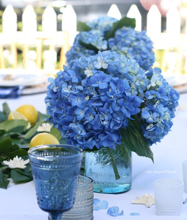 Visit this coastal cottage all decked out for summer! https://ciaonewportbeach.blogspot.com/2019/07/a-balboa-cottage-dinner-party.html…  #balboaIsland #newportbeach #hydrangeas #tablescape