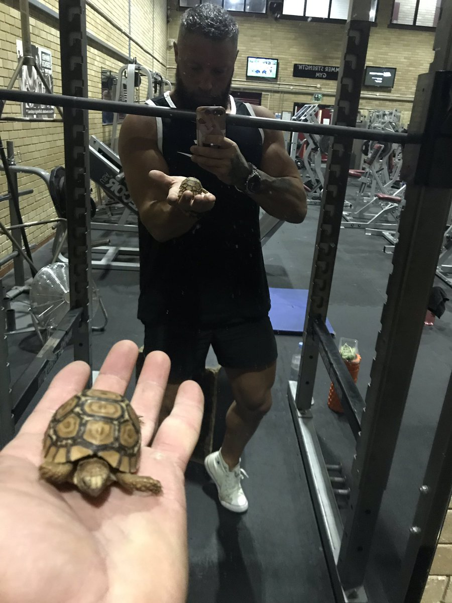 My gym partner is better than yours 💪🏼🐢#gym