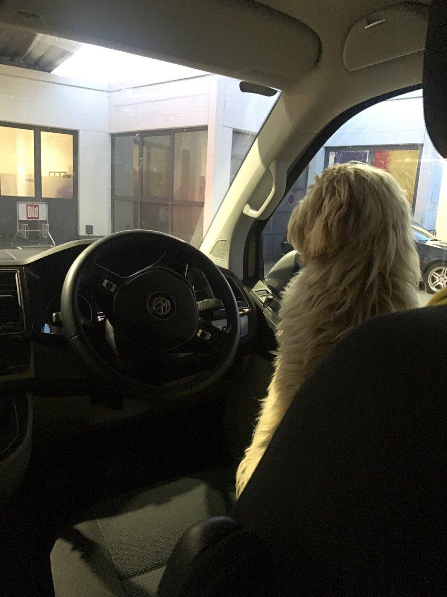 Teemu's at the wheel #ncfc #cityontour #teemu<br>http://pic.twitter.com/PCfdY2GNjV
