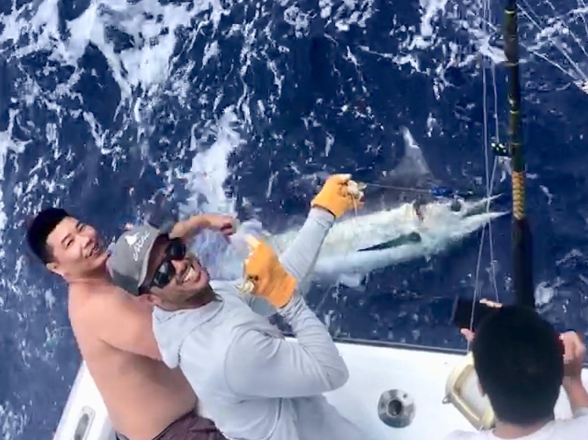 Kona, HI  - Hooked Up went 4-6 on Blue Marlin and 1-2 on Spearfish.