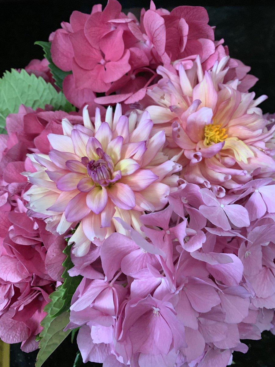 Flowers from my Grandmother's garden #flowers #hydrangeas #Daliahs