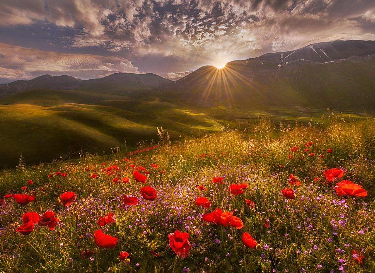Your soul is a gloriousbeacon of light.Awaken to it.Let it radiate love, peace,beauty & generosity of spirit.#Twittblaster #Soulful #Glorious #Awakening #BeaconOfLight #GenerosityOfSpirit #Love #Peace #Landscape