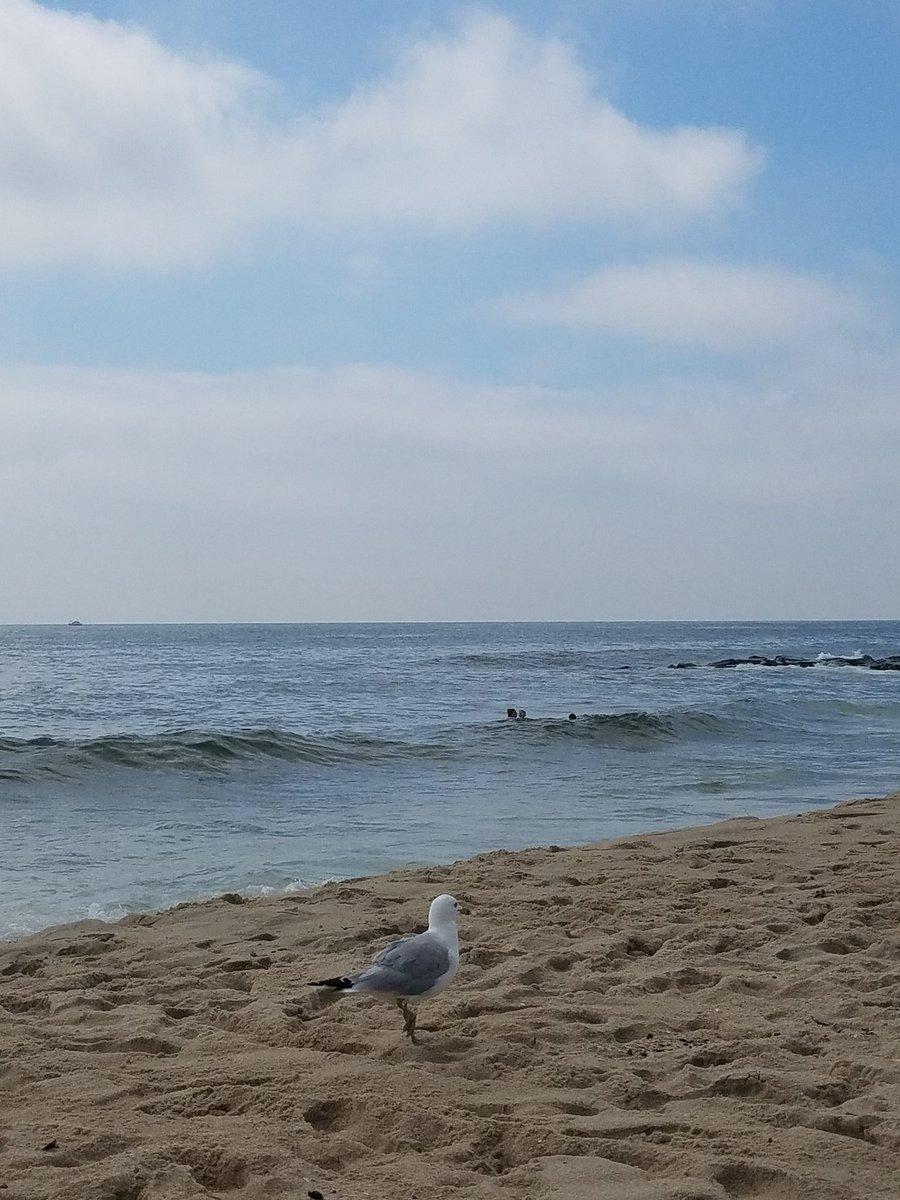 OceanGrove07756 - Ocean Grove, New Jersey Twitter Profile