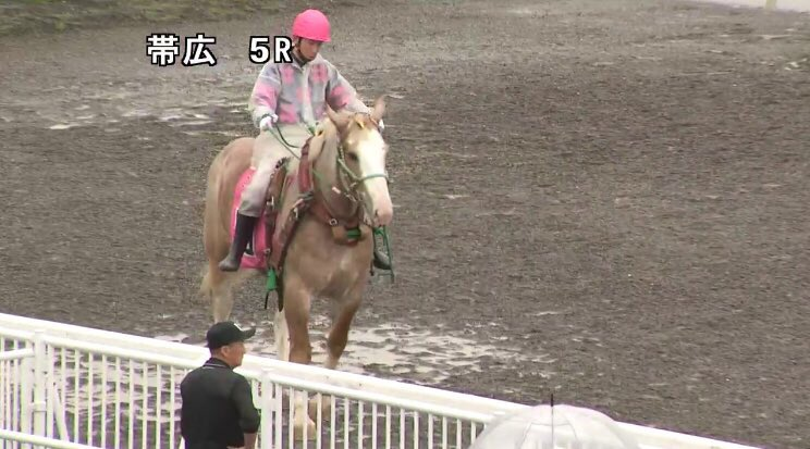 今日はばんえいも楽しみなレースがたくさん☺️‼︎ボタ姉妹頑張れー!🎀(血縁なし)  福島メインも気にはなるけど、ウイニング競馬見ながら買おうかな🐴❣️