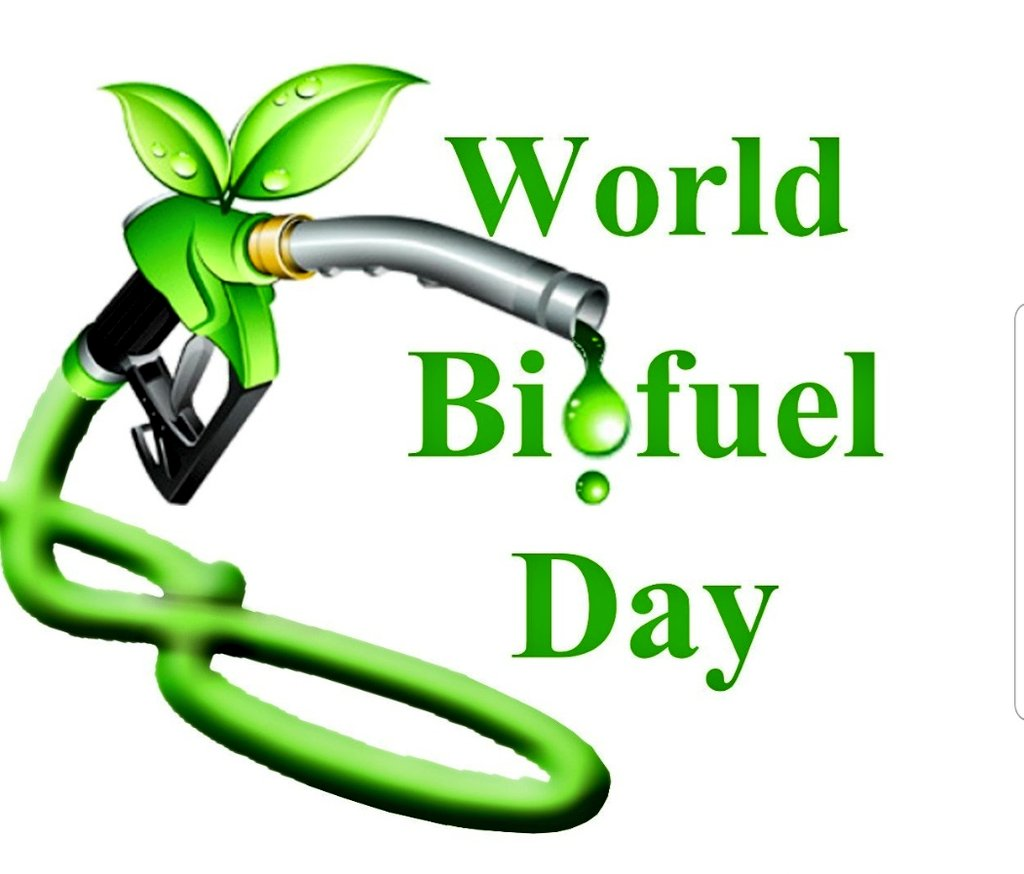 """Hindustan Petroleum Corporation Limited on Twitter: """"World Biofuel Day on  10th August'19 is to be celebrated to create awareness about the importance  of non-fossil fuels as alternative to conventional fossil fuels.  #WorldBiofuelDay #"""