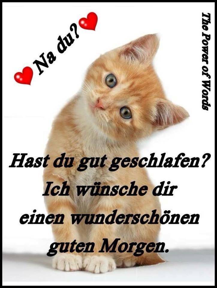 Werner S Tweet Einen Wunderschönen Guten Morgen Tweeps