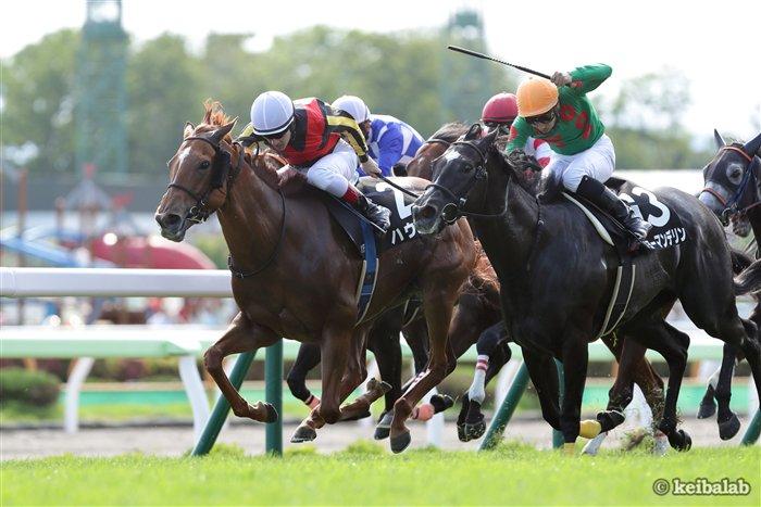 【夏の出世レース】函館11R・函館日刊スポーツ杯を勝ったのはハウメア(牝5、美浦・藤沢和)。このレースが準OPの芝1200mとなったのは13年から。勝ち馬は後の女王ストレイトガール。昨年のこのレース勝ち馬はダノンスマッシュ。 #競馬 #keiba #ハウメア https://t.co/oGBWSLAhSe