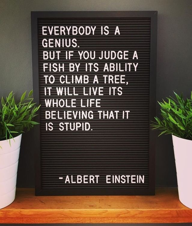 """""""Everyone is a genius. But if you judge a fish by its ability to climb a tree, it will live its whole life believing that it is stupid.""""  Albert Einstein   #amwriting #WritingCommunity <br>http://pic.twitter.com/fSNRA0u4AK"""