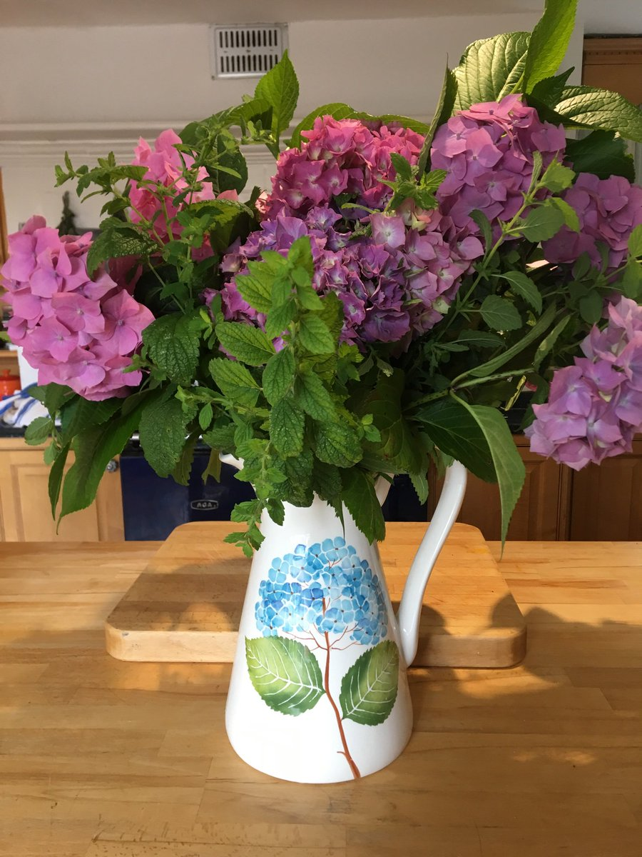 #gardening this morning, weeding and chopping back brambles , but look at these beautiful #Hydrangeas I just brought in to brighten up the kitchen! Happy #weekend folks👍😘