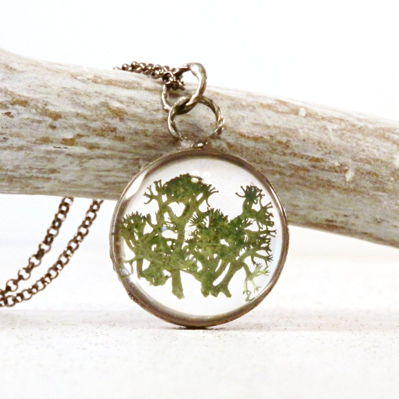 Real moss necklace - terrarium pendant - real plant jewelry - forest inspired - woodland jewelry - glass terrarium - nature lover - rustic https://etsy.me/2zEJLTb  #boho #handmadejewelry #terrarium #gypsy #handmade #realflower #bohochic #TiffanyMethod