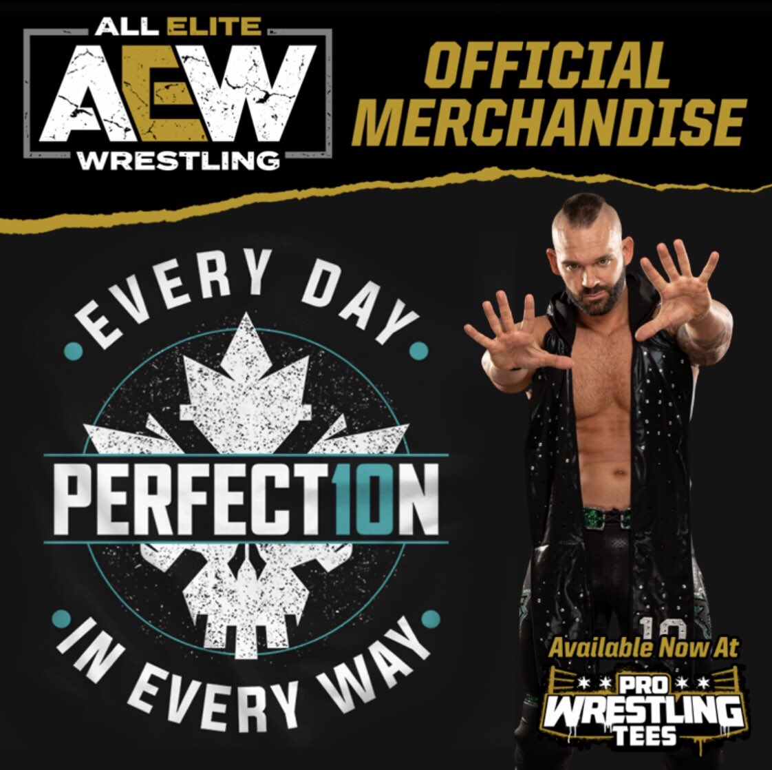 If you're a supporter of #TheChairman and #Perfect10n well, you know what to do.   If you're a doubter, and don't @ me when talking shit...🖕🏻... now go buy a shirt you plug.   http://Prowrestlingtees.com/AEW